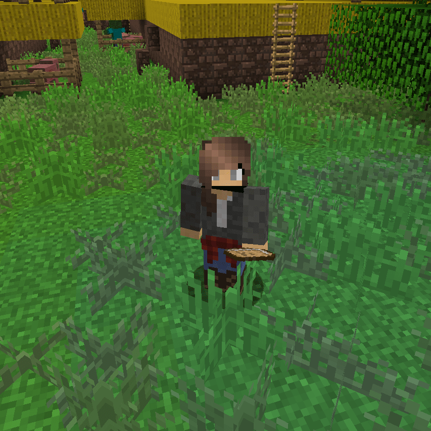 A Minecraft avatar standing in a field of grass.